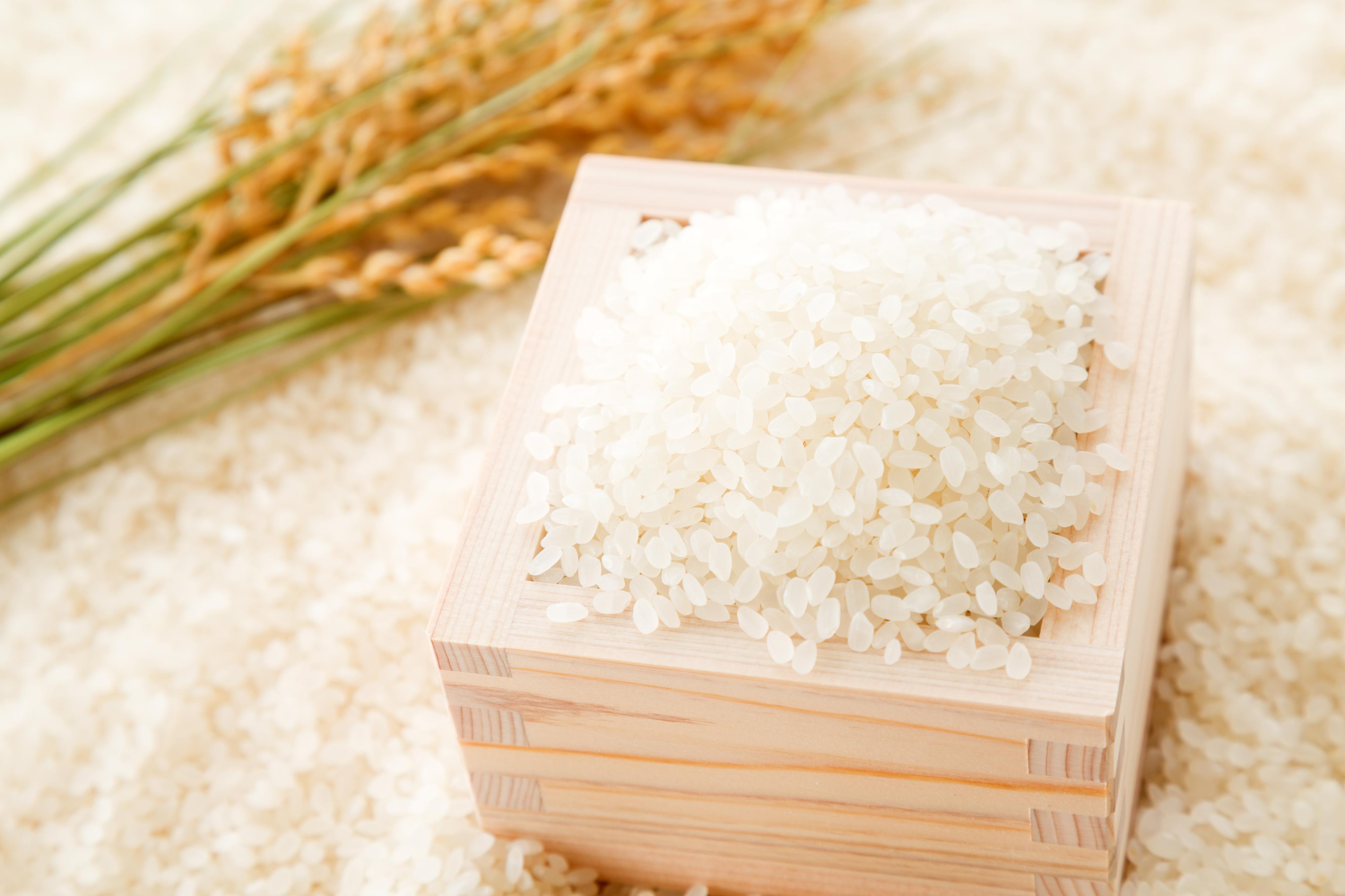 お米(無農薬米)